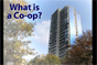 what is a coop